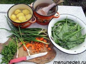 Продукты для ухи с водкой и поленом  на курином бульоне