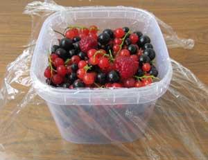 Ягоды помещенные в пластмассовый контейнер выстеленный пищевой пленкой