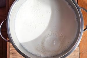 Молоко кипящее в кастрюле для приготовления домашнего сыра