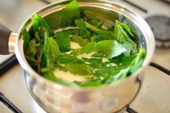 Листья мыты в молоке со сливками и сахаром