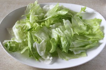 Листья салата порванные руками и распределенные по тарелке