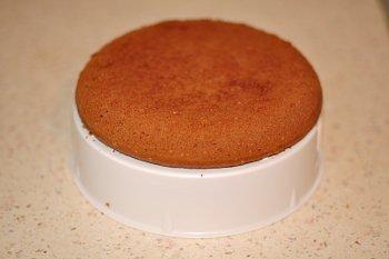 Шоколадный бисквит для торта на подставке