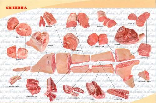 Кулинарная школа онлайн: как правильно выбрать мясо