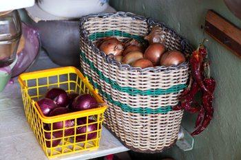 Luk-hranenie ovoshhej i fruktov zimoj