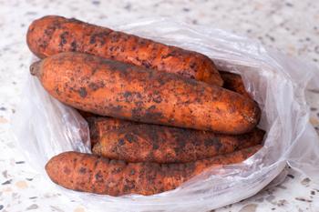 Morkov' v pakete-hranenie ovoshhej i fruktov zimoj